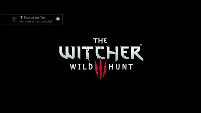 Nick Case - The Witcher III